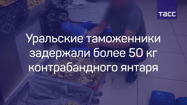 Натаможне Екатеринбурга задержали китайцев с50 килограммами янтаря