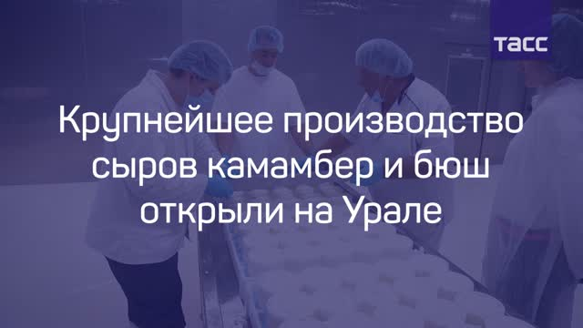 ВВерхней Пышме открыли крупнейшее в Российской Федерации производство сыров сбелой плесенью