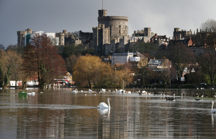 Неизвестные устроили охоту накоролевских лебедей нареке Темзе
