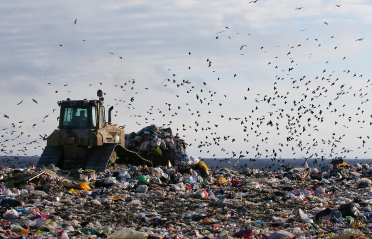 Устранена уже треть незаконных свалок, нанесенных накарту проекта ОНФ «Генеральная уборка»