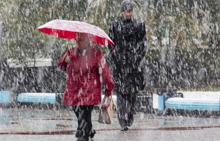 МЧС предупредило обусилении ветра вМосковской области
