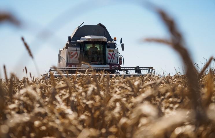 Минсельхоз РФ: Вопросы экспорта зерна вТурцию решены